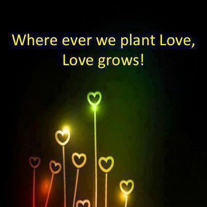 Plant Love in Your Heart, and let it grow grow grow <3
