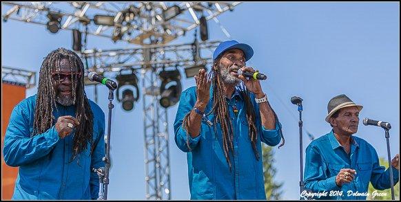 THE TAMLINS - LIVE AT SIERRA NEVADAWORLD MUSIC FESTIVAL (2014)