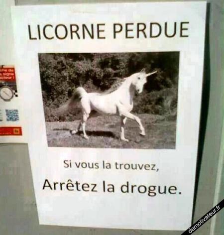 Licorne perdu ! 8D