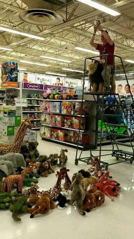 Pendant ce temps là, dans le rayon jouet d'un supermarché.