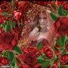 Belles roses rouges.