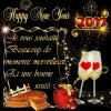 Magnifique cadeau pour la nouvelle année de mon amie Oh-My-Love2.