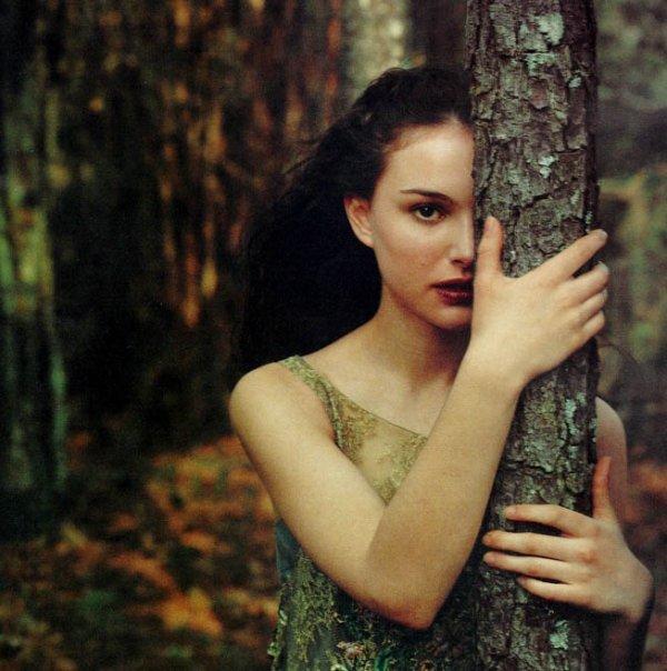 Promenons-nous dans les bois, pendant que le loup n'y est pas