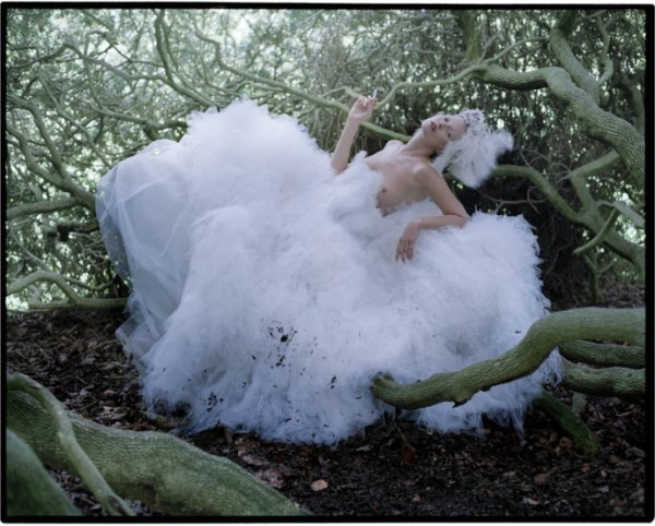 Les photos de Tim Walker