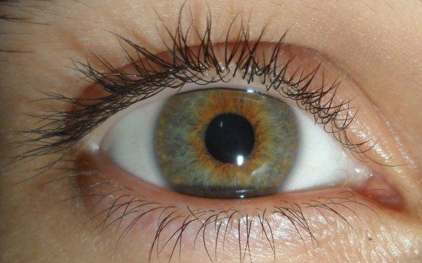 Thème yeux : Mon oeil.