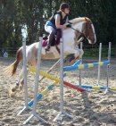 Photo de Vente-equestre-59
