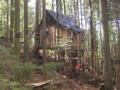 construction cabane scout