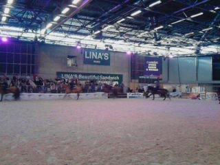 salon du cheval 2011  numeros 1