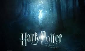 Pour tous ce qui aime Harry Potter