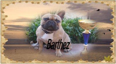 Message d'Adieu de Barthez