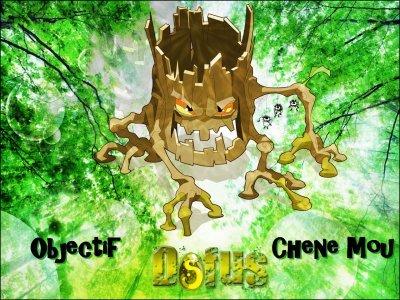Objectif CHENE MOU !!