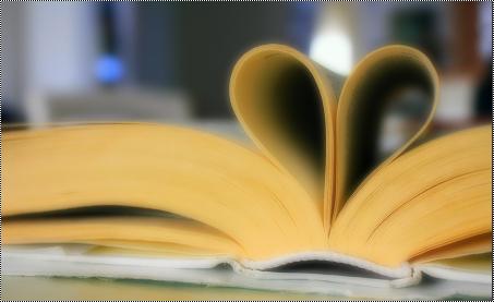 Bilans de lecture 2013