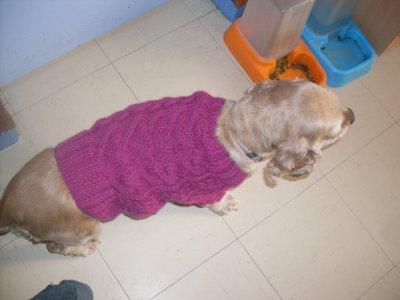 Le manteau de Kaïla