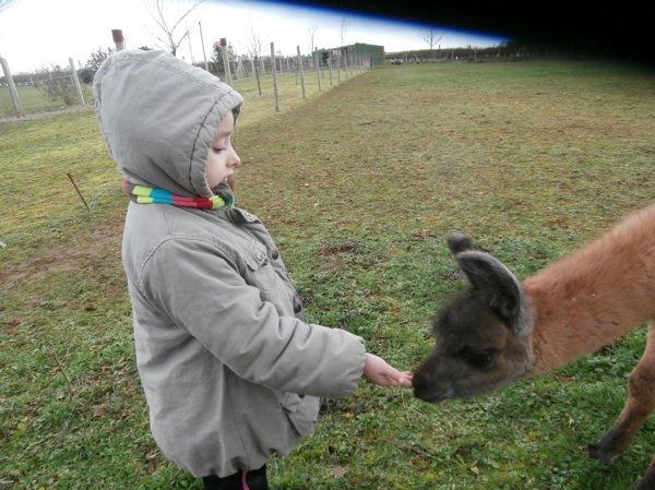 Visite d'une petite fille pour voir Hubert