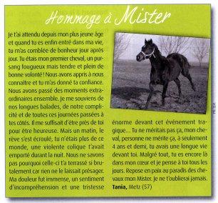 Cheval Magazine (Janvier 2011)