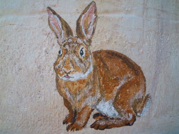 Un lapin ou peut-être une lapine.....