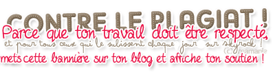 Bienvenue sur mon Blog chers Lecteurs !! :D