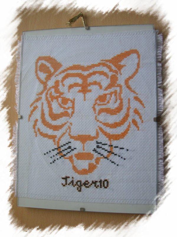 broderies en cours, tigre et nouvelle