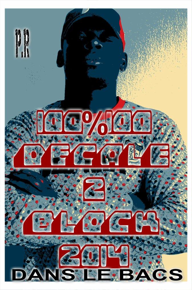 100%100 DECALE 2 BLOCK / PAVA RUTTI 100%100 DECALE 2 BLOCK MAQUETTE BIBI MOLASO (2013)