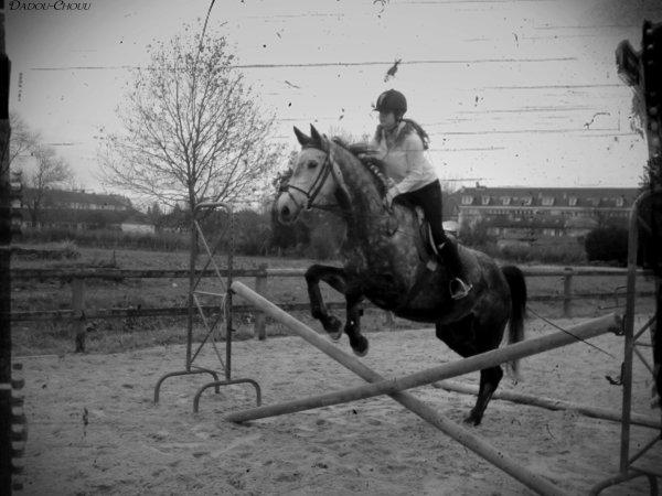 Le cheval & pour l'homme comme les ailes le sont pour l'oiseau. ♥