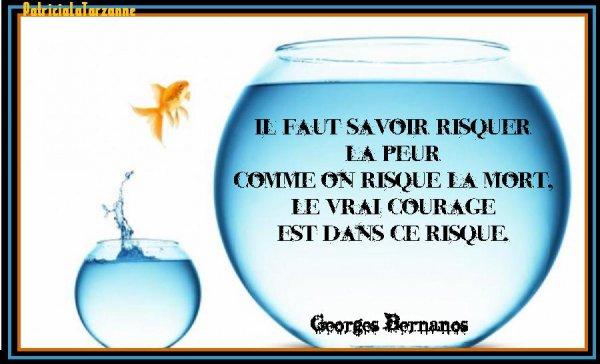 LE RISQUE............ A MEDITER