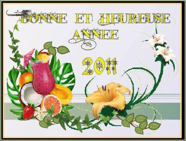MES VOEUX POUR 2011