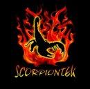 Photo de scorpiontek