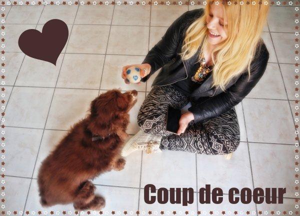 曆 Le 18/04/2019 : Rencontre avec Daril 曆