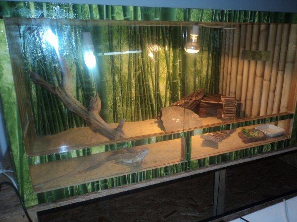 terrarium de aragon