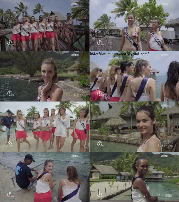 Jour 4 : Les Miss, baignade en eaux troubles