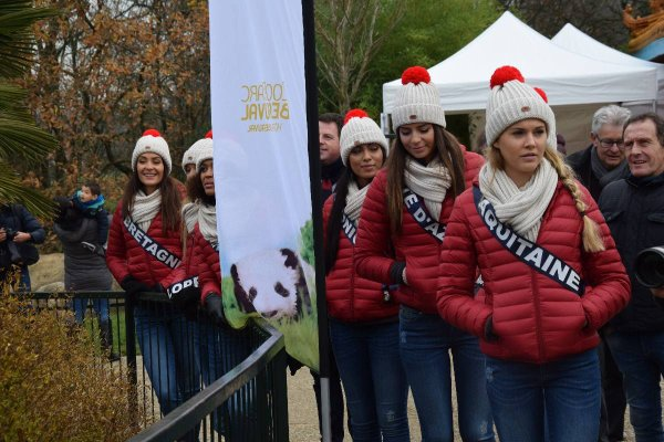 Aventure Miss France 2018 - Beauval