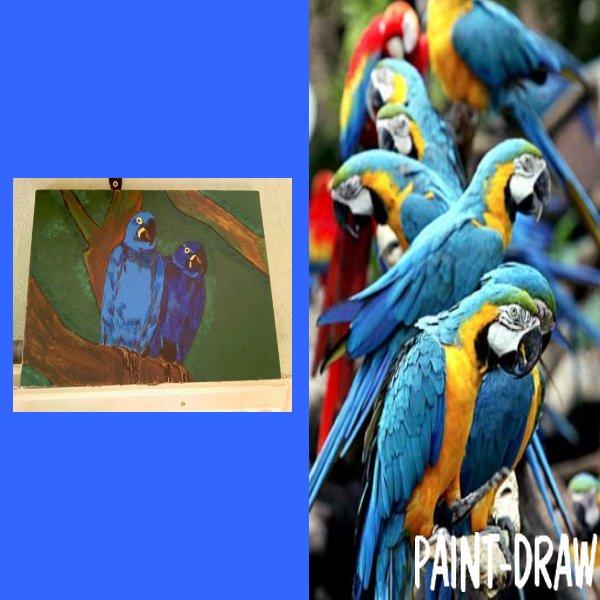 peinture n° 9 : perroquets.