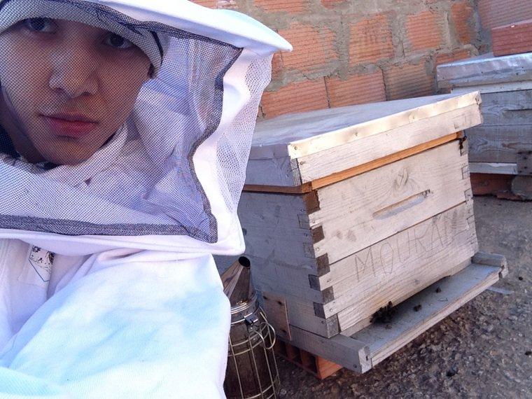 abeilles :3