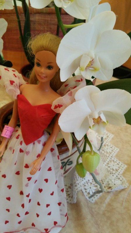 Barbie 1983 Lovin You