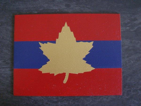 2éme concpetion de magnettes canadiennes ( Pour mon fréro ) ....