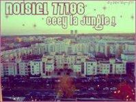 Noisiel / Ousko77 (2011)