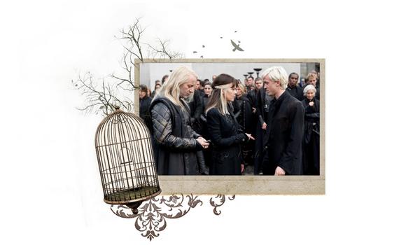 * Tom Felton : Harry Potter Behind the Scenes Photoshoot *