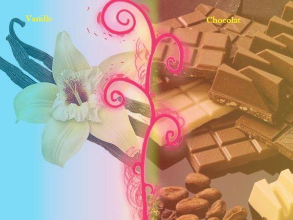 VS 4 : Vanille / chocolat