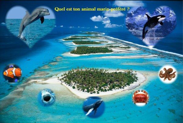 Sondage 28 : Animaux marins