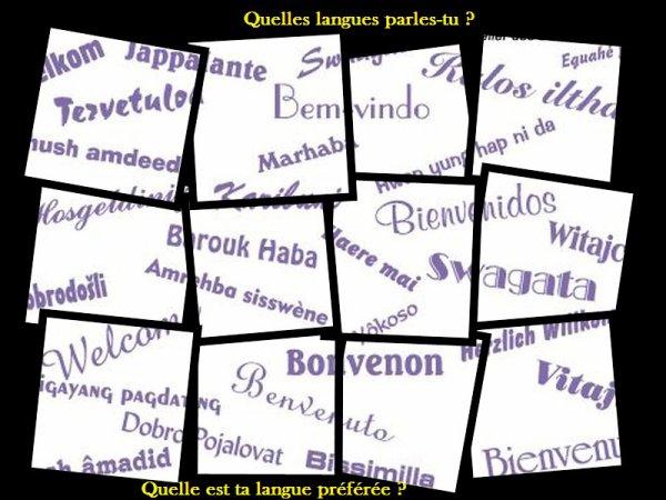 Sondage 56 : Langues