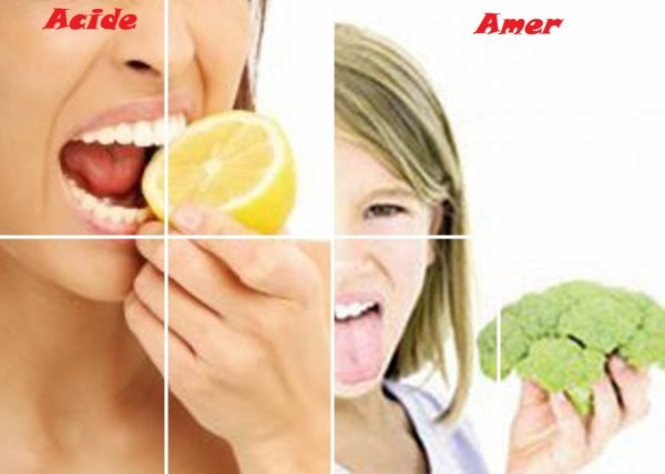 VS 98 : Acide / amer