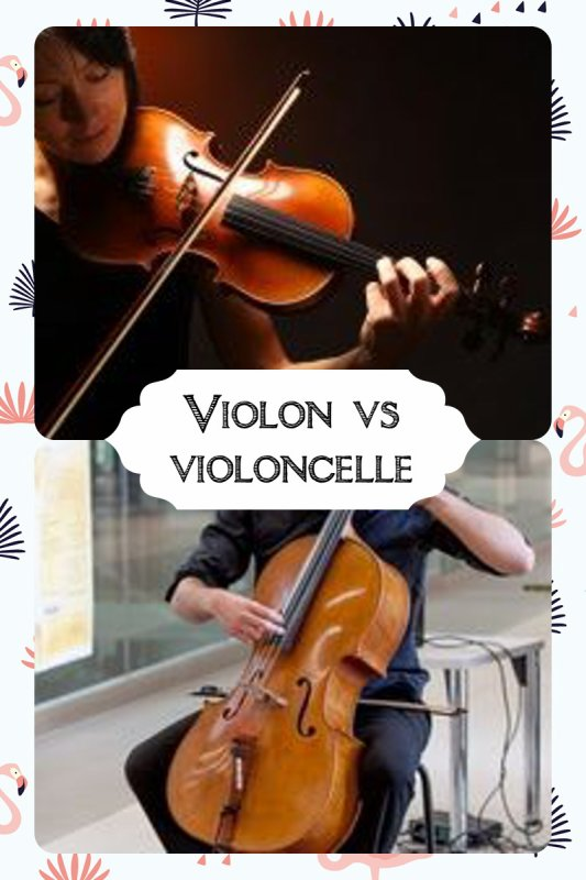 VS 165 : Violon / violoncelle
