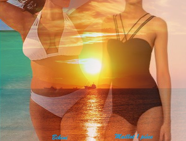 VS 172 : Bikini / maillot 1 pièce