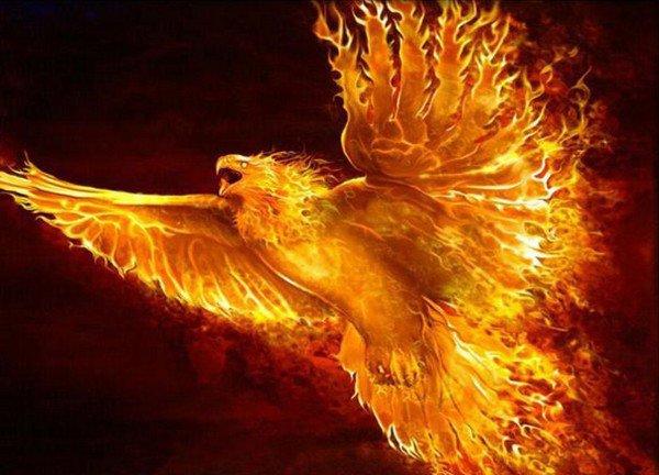 Chapitre 16 : La résurrection du phénix