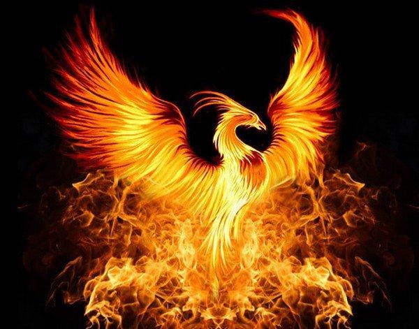 Chapitre 33 : Le feu aux poudres