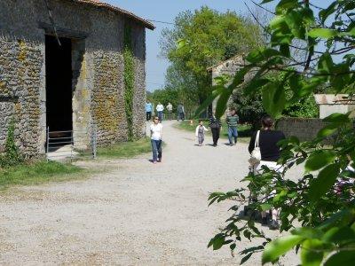 portes ouvertes à la ferme
