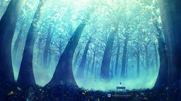 Mori - La Forêt des Rêves