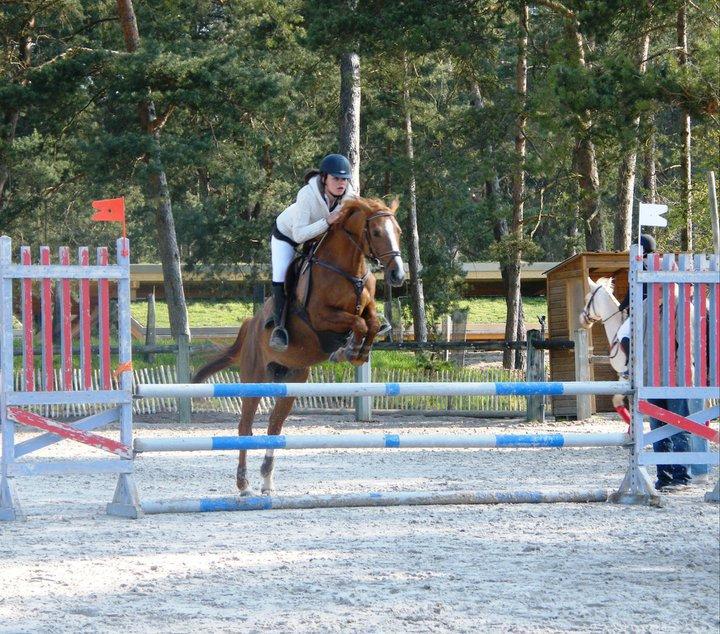 """""""C'est le cavalier qui s'adapte à sa monture et non pas la monture qui doit s'adapter au cavalier."""""""