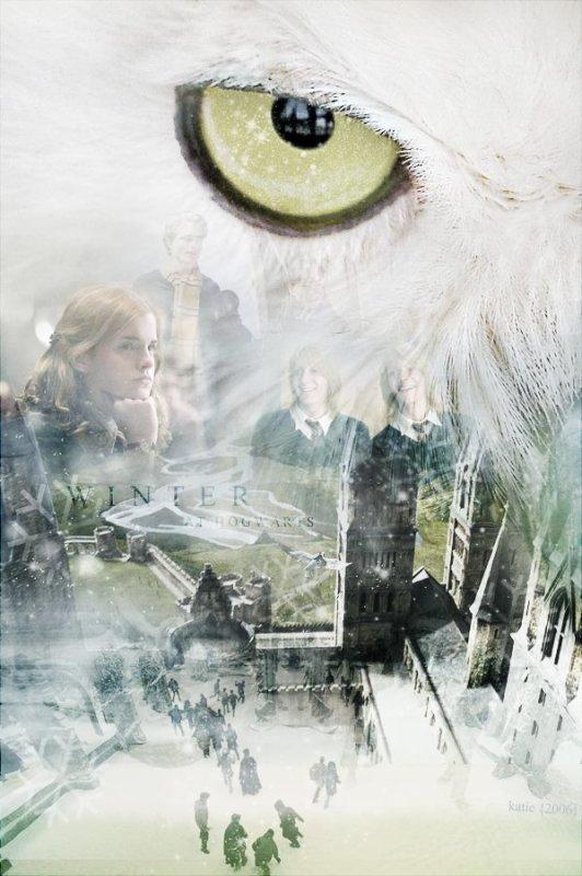 nouvelle affiche Harry Potter !