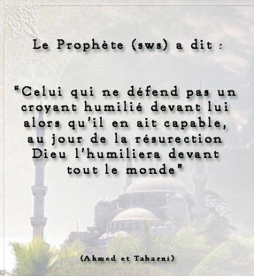 Si tu pouvais rencontrer le prophete